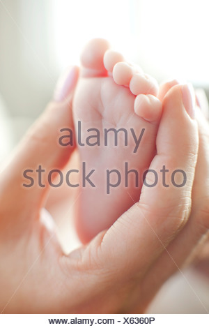 Baby's foot. Mother holding her 2 month old baby's foot. - Stock Photo