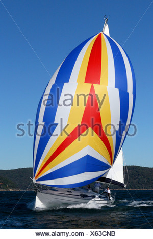 Trimming the spinnaker sail on a yacht cruising on the North Shore from Sydney, Australia. - Stock Photo