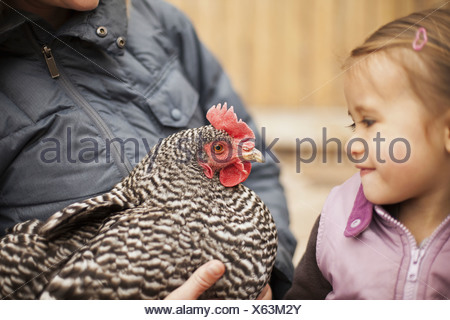 A woman holding a black and white chicken with a red coxcomb A young girl beside her holding closely at the chicken - Stock Photo
