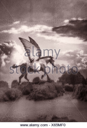 Pegasus - Stock Photo