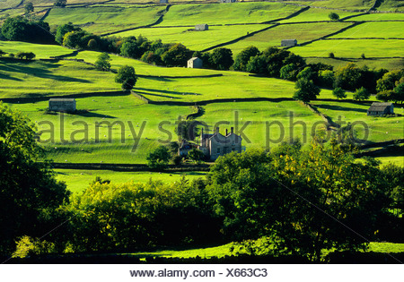 Europe, Great Britain, England, North Yorkshire, Yorkshiredales - Stock Photo
