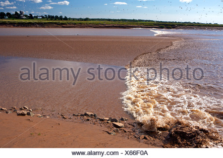 Tidal Bore on the Salmon River in Truro, Tidal Bore Road, Fundy Shore Ecotour, Glooscap Trail, Cobequid Bay, Nova Scotia, Canada - Stock Photo