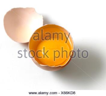 Organic egg yolk in shell - Stock Photo