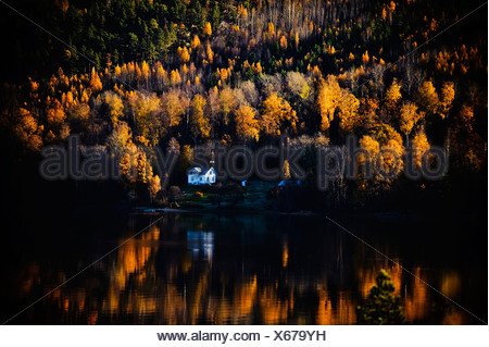 Remote house in the forest by lake - Stock Photo