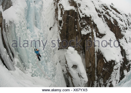 A professional female climber ice climbing a frozen waterfall at Ouray Ice Park in Ouray, Colorado. - Stock Photo