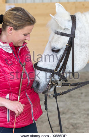 German Riding Pony Rider after riding lesson smoothing white pony - Stock Photo