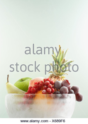 Fruit in ice bowl - Stock Photo