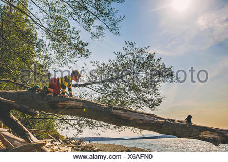 Boy climbing on a tree trunk by a lake - Stock Photo