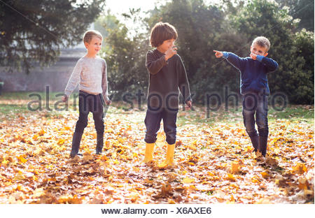 Three boys playing outdoors, in autumn leaves - Stock Photo