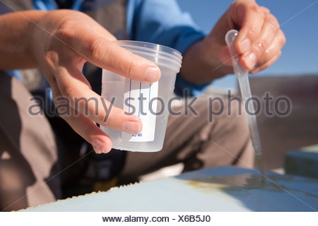 Scientist collecting samples of algae on a sampling surface in a boat - Stock Photo