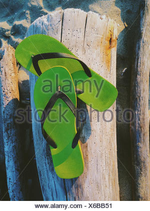 Pair of green flip flops on driftwood - Stock Photo