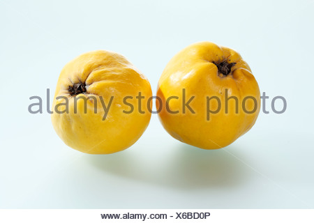 Quinces on white background, close up - Stock Photo