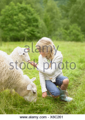 Young girl smiling and crouching by lamb in a field. - Stock Photo