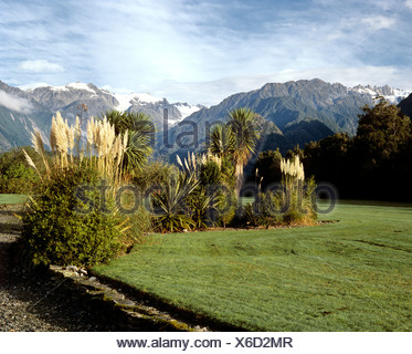 Landscape at the Franz Josef Glacier, South Island, New Zealand - Stock Photo