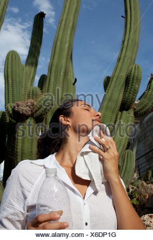 Heat wave, woman drying sweat in front of a cactus, Barcelona, Spain, Europe - Stock Photo