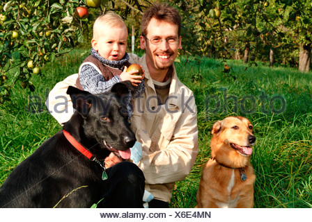 MR PR father with his baby boy and two dogs on a meadow with apple trees - Stock Photo