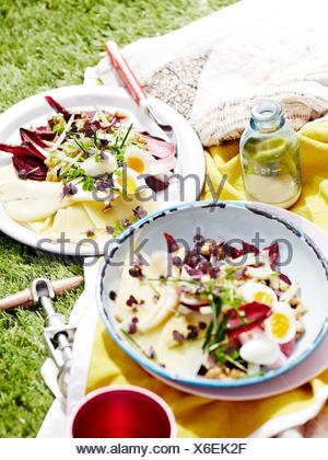 Two plates of salad on picnic blanket, close-up - Stock Photo