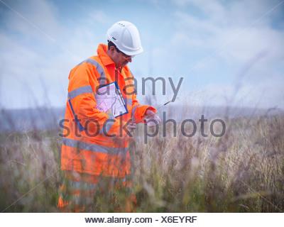 Ecologist examining tall grass - Stock Photo