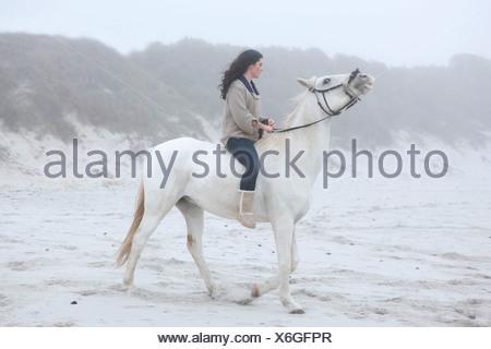 Woman riding horse on beach - Stock Photo