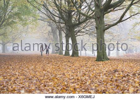 Two young girls walking through forest in autumn - Stock Photo