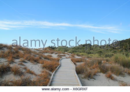 Beachpath, New Zealand - Stock Photo