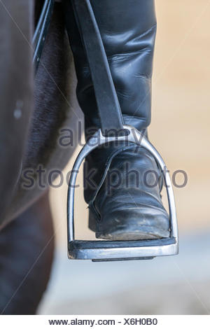 Horseback riding Riding boot stirrup - Stock Photo