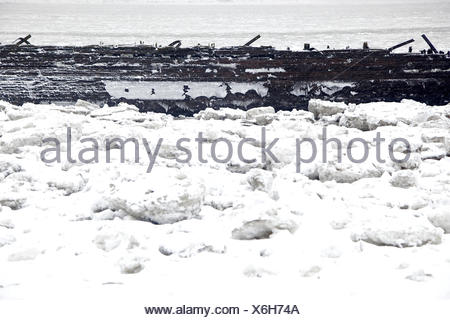 Elbufer, pack ice, ship wreck, - Stock Photo