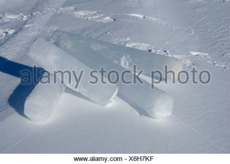 Alaska, Bering Sea. Studying ice condiitons and the changing ecosystem due to global warming. Ice cores. - Stock Photo