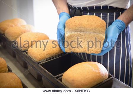 Baker holding loaf of freshly baked bread - Stock Photo