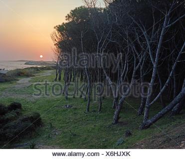 Vignola Mare, Sardinien (Gallura) - Stock Photo