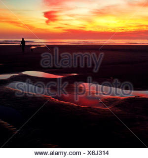 Scenic seascape at sunset - Stock Photo