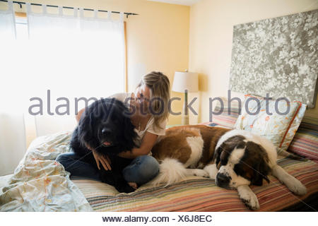 Woman cuddling big dogs in bed - Stock Photo