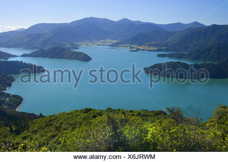Marlborough Sounds, New Zealand - Stock Photo