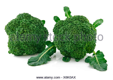 Ripe Broccoli Cabbage Isolated on White - Stock Photo