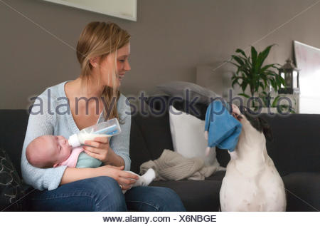 Feeding my baby and the dog wants to play - Stock Photo