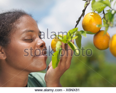 Woman Smelling Oranges On A Tree - Stock Photo