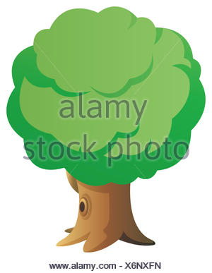 tree beautiful beauteously nice leaf object detail single big large enormous - Stock Photo
