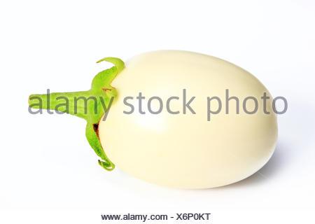 White eggplant (Solanum melongena) - Stock Photo