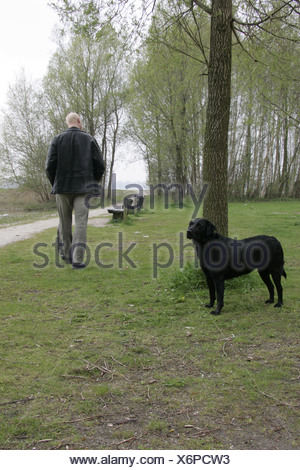 Man abandon dog outside - Stock Photo