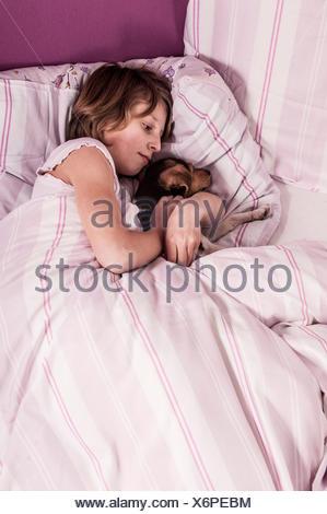 Girl lying in bed with a Danish Swedish Farmdog - Stock Photo