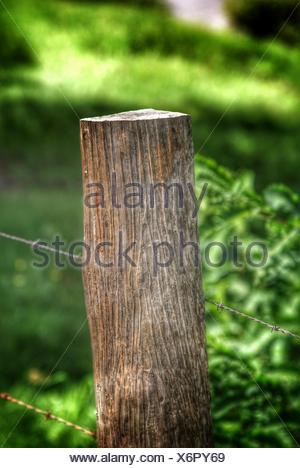 Close-Up Of Barbed Wire Fence On Wooden Post - Stock Photo