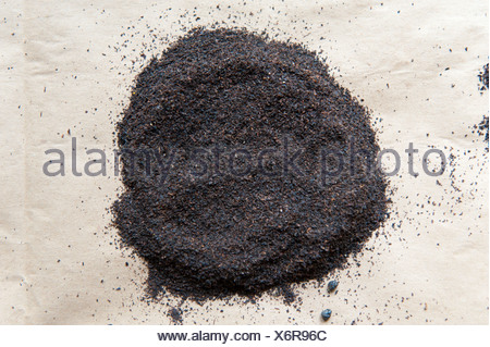 Black Tea, Dust, Ceylon, Gampola, Kandy Distrikt, Zentralprovinz, Sri Lanka - Stock Photo