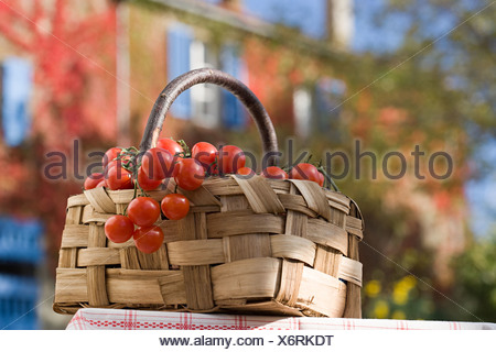 Basket of cherry tomatoes - Stock Photo