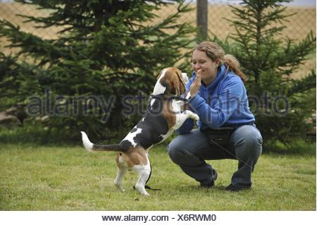woman with Beagle - Stock Photo