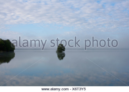 Scenic landscape with water and lonely tree - Stock Photo