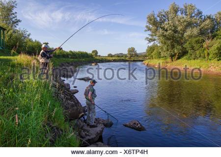 Atlantic salmon, ouananiche, lake Atlantic salmon, landlocked salmon, Sebago salmon (Salmo salar), two anglers fishing a salmon, Ireland, Moy River - Stock Photo