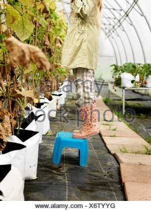 Girl in green house - Stock Photo