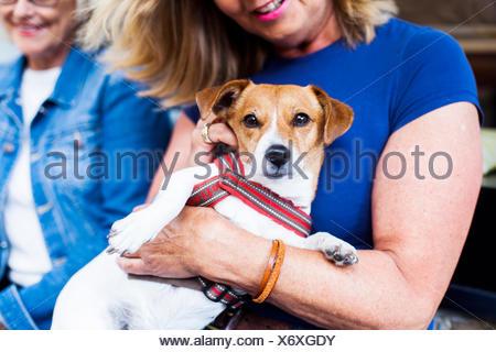 Close-up of senior woman holding dog at cafe - Stock Photo