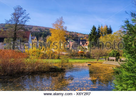 Jonsdorf Park im Herbst im Zittauer Gebirge - Jonsdorf Park in fall in Zittau Mountains - Stock Photo