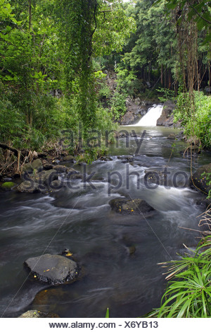 Scenic streams and waterfalls just below Kapena Falls near the Pali Highway,Oahu. - Stock Photo